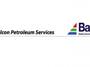 Salcon Petroleum Services is now offering Badleys' Geoscience Software and Services